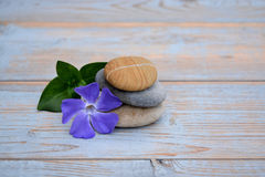 在使用的木头的三块禅宗石头与紫色花开花 图库摄影