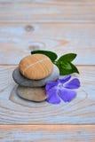 在使用的木头的三块禅宗石头与紫色花 免版税库存照片
