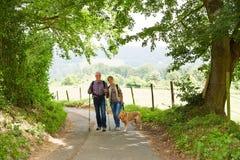 在供徒步旅行的小道的资深夫妇在夏天 免版税库存图片
