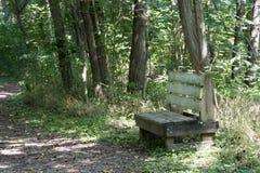 在供徒步旅行的小道的长凳 免版税库存图片