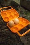 在便携式的蛋存贮的新鲜的鸡蛋的野营 免版税库存图片
