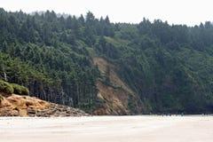 在俄勒冈海岸的海滩 库存图片