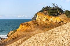 在俄勒冈海岸的海角Kiwanda地质砂岩 免版税库存图片