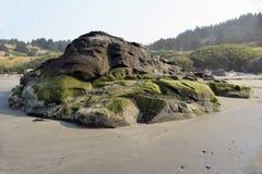 在俄勒冈海滩的生苔岩石 免版税库存照片