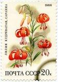 在俄罗斯打印的邮票显示花百合,大约1988年 免版税库存照片