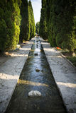 在保加利亚浇灌特点巴尔奇克宫殿植物园 库存照片