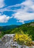 在保加利亚语弗拉察巴尔干的山风景 库存照片
