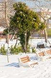 在保加利亚语的波摩莱积雪的中央公园,冬天 图库摄影