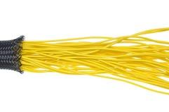 在保护管的黄色电线 图库摄影