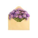 在信封的异常的花 免版税库存照片