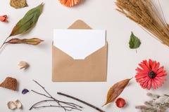 在信封的纸牌组成与秋天干燥植物 免版税库存照片