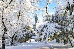在修道院海岛上的一个美丽如画的冬天风景,盖用雪和树冰在Dnipro市 图库摄影