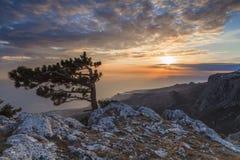 在俯视海的一座高山的日落风景 免版税库存照片