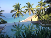 在俯视海洋和棕榈树的岩石边缘的水池 免版税图库摄影