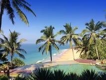 在俯视海洋和棕榈树的岩石边缘的水池 库存图片