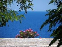 在俯视爱奥尼亚海,希腊的墙壁上的红色花 免版税库存图片