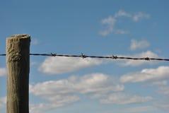 在倒钩铁丝网的焦点 免版税库存照片