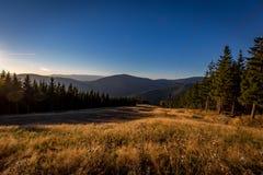 在倾斜的秋天视图在Kouty与绿色树、黄色草和深蓝天空的nad Desnou 库存图片