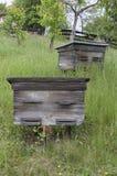 在倾斜的老蜂箱 免版税库存照片