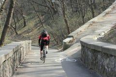 在倾斜的骑自行车的足迹 库存照片