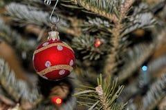 在假日树的红色Xmas装饰品 库存照片