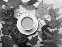 在做构成,顶视图的围巾附近的茶杯 库存照片