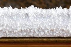 在做植物的自然盐的被沉淀的盐 库存图片