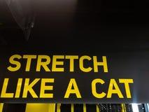 在健身房的诱导文本体育男人和妇女的能训练更加坚硬 库存照片