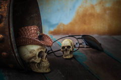 在储水箱的头骨盖帽在木 免版税库存图片