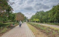 在傲德萨,乌克兰附近的Chernomorsk sity 免版税库存图片