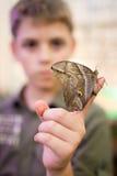 在儿童的手指的巨型孔雀飞蛾 免版税库存照片