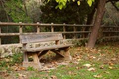 在充分乘驾的孤立长凳与黄色下落的叶子 免版税库存照片