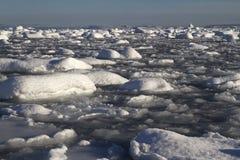 在充分南极半岛的海峡Pinola冰附近和小 免版税图库摄影