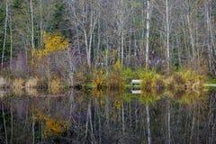 在充分的显示的秋天颜色在湖Cowichan,温哥华岛 免版税库存照片
