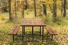 在充分的辉煌的秋天 库存图片