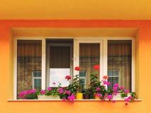 在充满活力的五颜六色的房子墙壁上的现代窗口有花的 库存照片