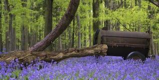 在充满活力的会开蓝色钟形花的草春天森林风景的老农业机械 免版税库存照片