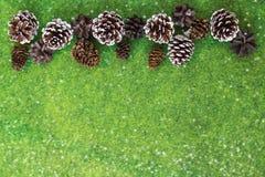 在充满活力的绿色毛毡背景的杉木和冷杉球果 图库摄影