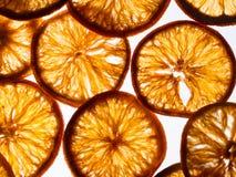 在光亮背景的干燥橙色切片 库存图片