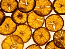 在光亮背景的干燥橙色切片 免版税库存图片