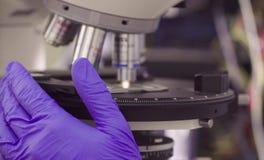 在光学显微镜透镜下的滑动玻璃 库存照片