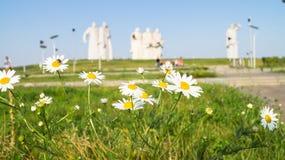 在光彩的英雄前面的Panfilov分裂, Dubosekovo,莫斯科地区,俄罗斯的纪念品的开花的草甸 库存图片