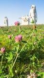 在光彩的英雄前面的Panfilov分裂, Dubosekovo,莫斯科地区,俄罗斯的纪念品的开花的草甸 免版税库存照片