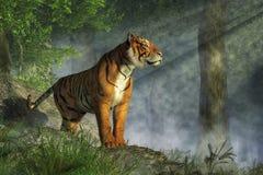在光的老虎 皇族释放例证