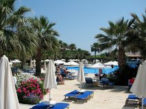 在克利特,希腊海岛上的迷人的花卉装饰和棕榈树  库存照片