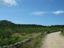 在克罗地亚乡下的一条开启的路 免版税库存照片