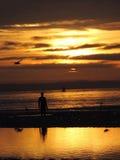 在克罗斯比海滩的日落 图库摄影