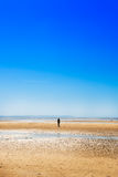 在克罗斯比海滩的雕塑,另一个地方安东尼Gormley 免版税库存照片