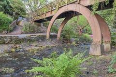 在克里斯特尔里弗庭院的木脚桥梁 图库摄影