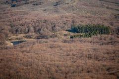 在克里米亚半岛山的春天 图库摄影